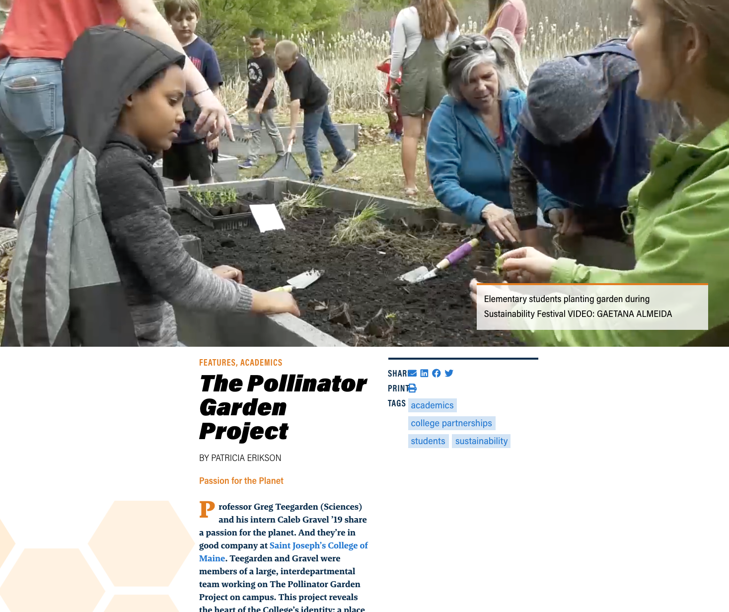 pollinator_multimedia_article