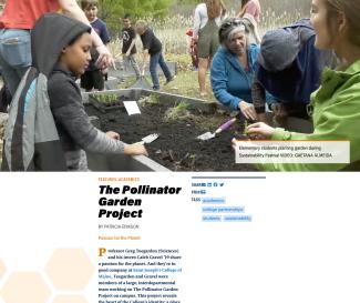 pollinator_multimedia_article